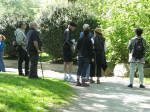 May 12th Migratory Bird Day walk in HP Sanctuary